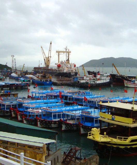 Вьетнамский порт Лотос 6 лет не выплачивал дивиденды Украине